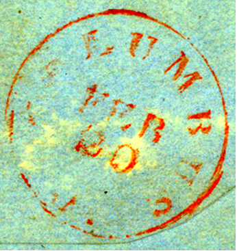 ID 10009, Image ID 6317