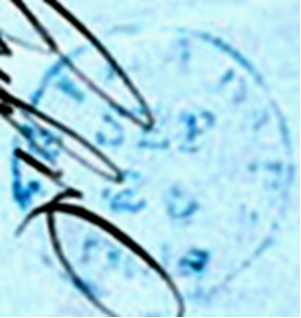 ID 10601, Image ID 6690