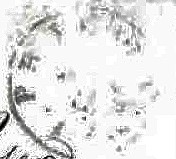 ID 11846, Image ID 22903