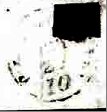 ID 11946, Image ID 22408