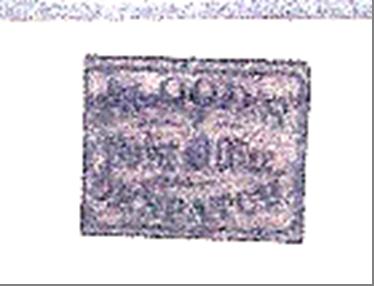 ID 12753, Image ID 21993