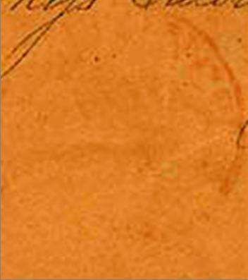 ID 14611, Image ID 9259