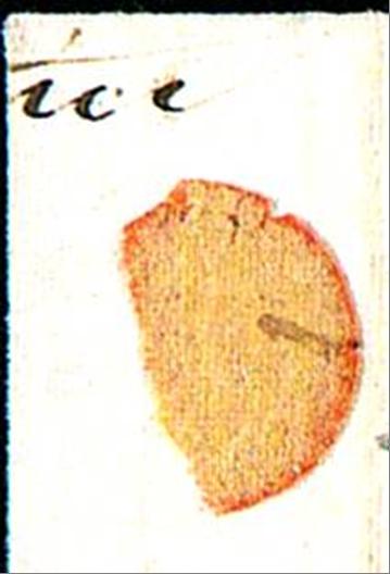 ID 20221, Image ID 20266
