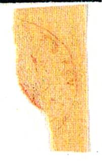 ID 20221, Image ID 20267
