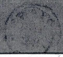 ID 21566, Image ID 23882