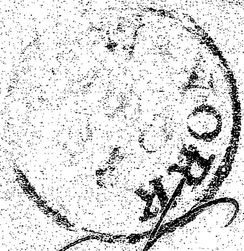 ID 21587, Image ID 24294
