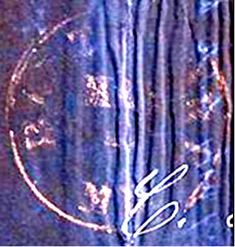 ID 2729, Image ID 1791