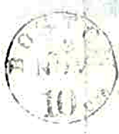 ID 3919, Image ID 24523