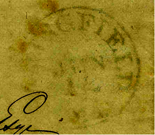 ID 4346, Image ID 2783