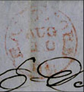 ID 441, Image ID 312