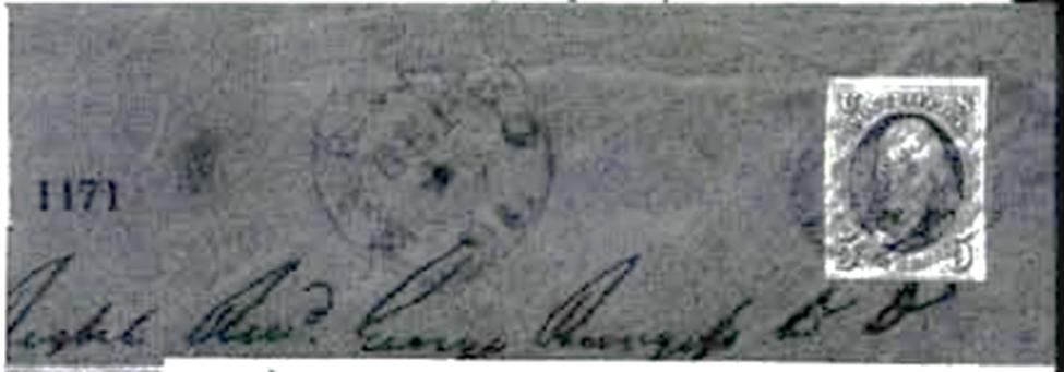ID 443, Image ID 23229