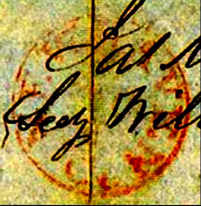 ID 499, Image ID 349