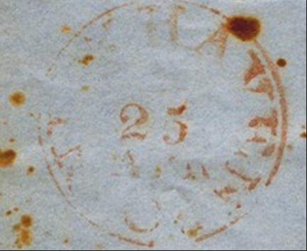 ID 595, Image ID 395