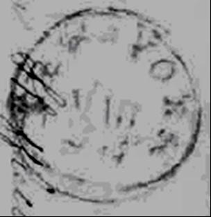 ID 6062, Image ID 3892