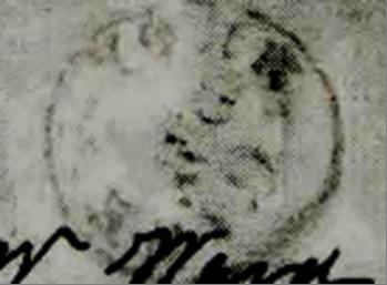 ID 6544, Image ID 4143