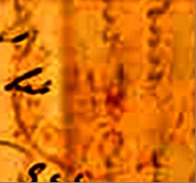 ID 9005, Image ID 5699