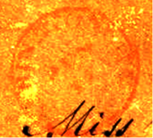 ID 932, Image ID 647