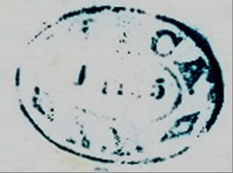 ID 9536, Image ID 6049