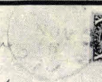ID 9841, Image ID 23464