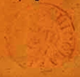 ID 988, Image ID 700